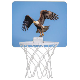 Bald Eagle with a fish Mini Basketball Hoop