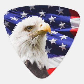 Bald Eagle with American Flag Background Guitar Pick