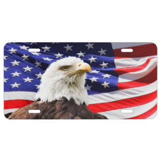 Bald Eagle with American Flag License Plate