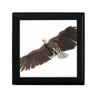 Bald Eagle with wings on down stroke Gift Box