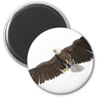 Bald Eagle with wings on down stroke Magnet