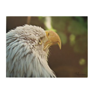 Bald Eagle Wood Wall Art