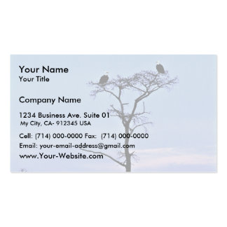 Bald Eagles at Reelfoot National Wildlife Refuge Business Card Templates