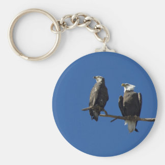 Bald Eagles Keychain