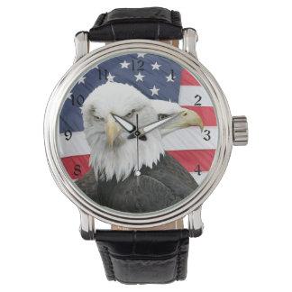 Bald eagles watch