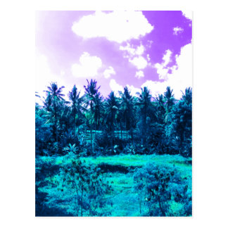 Bali Tropical Forest Postcard