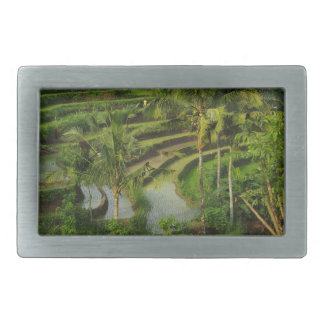 Bali - Young terrace ricefields and palms Belt Buckle