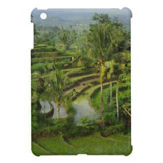 Bali - Young terrace ricefields and palms iPad Mini Cover