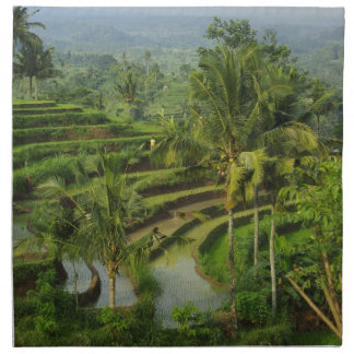 Bali - Young terrace ricefields and palms Napkin