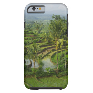 Bali - Young terrace ricefields and palms Tough iPhone 6 Case