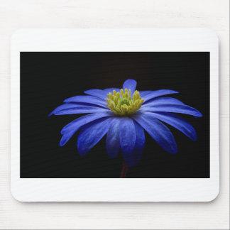 balkan-anemone mouse pad