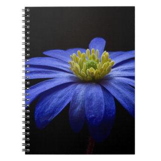 balkan-anemone spiral note books