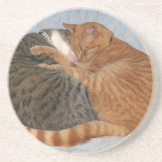 Ball of Cuteness Coaster