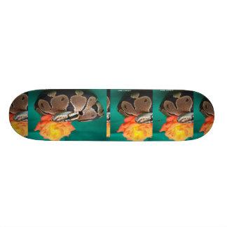 Ball Python, green background, orange rose Skateboard Deck