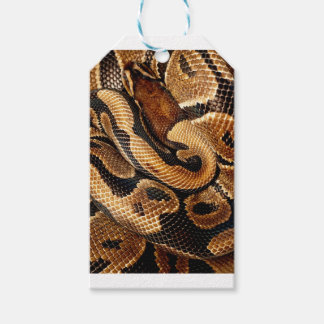 Ball Python is a work of Art Gift Tags