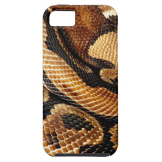 Ball Python is a work of Art iPhone 5 Cover