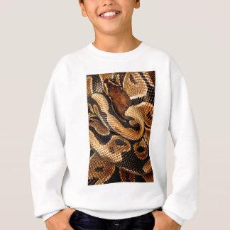 Ball Python is a work of Art Sweatshirt