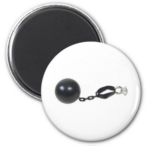 BallChainEngagement081510 Fridge Magnet