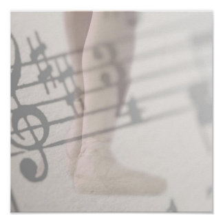 ballet shoes musical notes poster