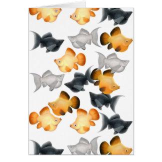 Balloon Mollies Aquarium Fish Card