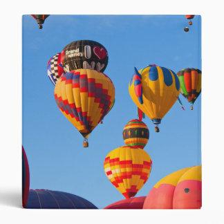 Balloons 6788 Ascending 3 Ring Binder
