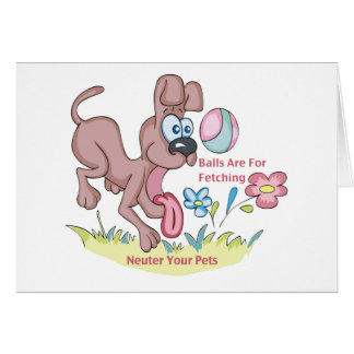 Balls 4 Fetching/Neuter Your Pets Cards