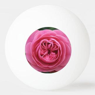 Balls of Ping Pong Pink Macro Ping Pong Ball