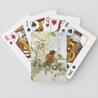 Baltimore Oriole and spring blossoms Poker Deck