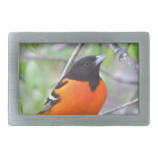 Baltimore Oriole Belt Buckles