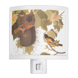 Baltimore Oriole Bird Nightlight Night Lites
