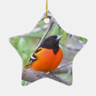Baltimore Oriole Ceramic Star Ornament