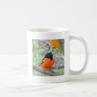 Baltimore Oriole Coffee Mug