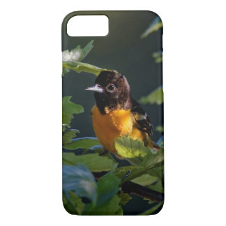 Baltimore Oriole in the Leaves Case-Mate iPhone Case