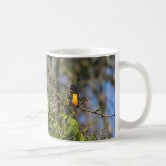 Baltimore Oriole in the Spring Coffee Mug