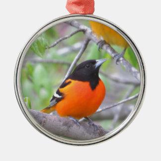 Baltimore Oriole Metal Ornament