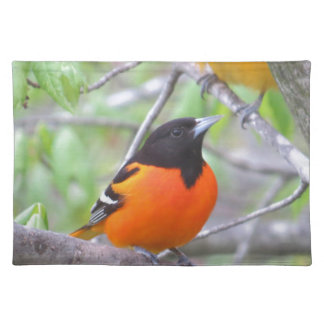 Baltimore Oriole Placemat