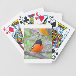 Baltimore Oriole Poker Deck