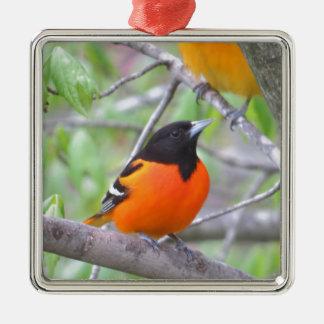 Baltimore Oriole Silver-Colored Square Ornament
