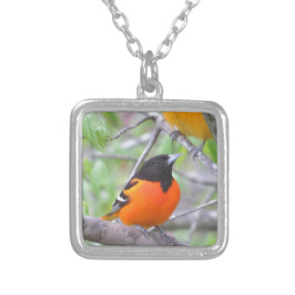 Baltimore Oriole Silver Plated Necklace