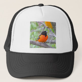 Baltimore Oriole Trucker Hat