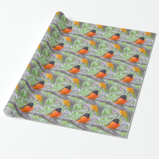 Baltimore Oriole Wrapping Paper