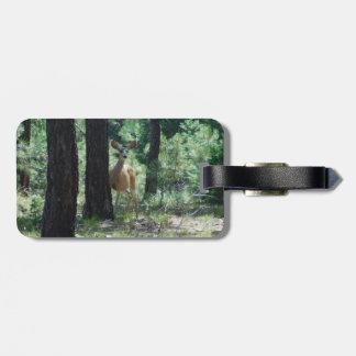 Bambi Luggage Tag