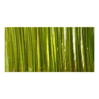 Bamboo abstract custom photo card