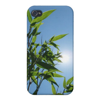 Bamboo and sun for iPhone 4 iPhone 4/4S Cases