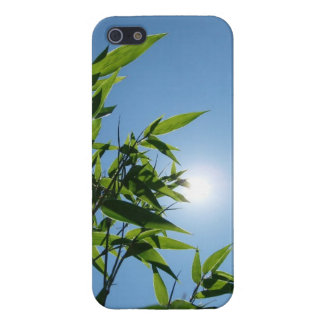 Bamboo and sun for iPhone 5/5S iPhone 5/5S Covers