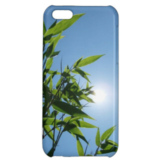 Bamboo and sun for iPhone 5C Cover For iPhone 5C
