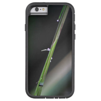 Bamboo and Tiny Water Drop Tough Xtreme iPhone 6 Case