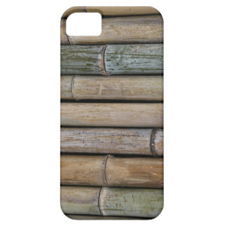 Bamboo Background iPhone 5 Case