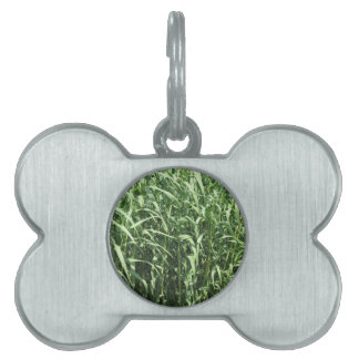 Bamboo cane trees as a background pet ID tag