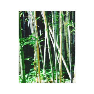 Bamboo - Canvas Art - Caribbean Island